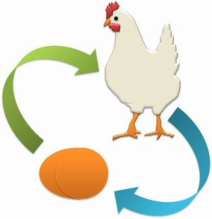 Ayam dan telor